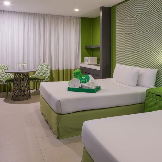 AB1-Luxury-Room-green-room-1